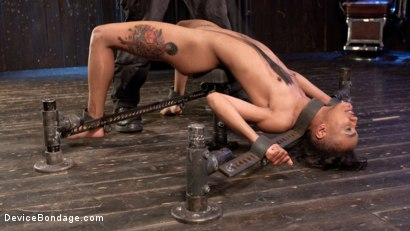 Photo number 12 from The Reason Why shot for Device Bondage on Kink.com. Featuring Nikki Darling and The Pope in hardcore BDSM & Fetish porn.