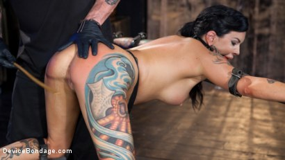Photo number 9 from Tattooed Masochist In Grueling Bondage, Tormented and Orgasm Overload!! shot for Device Bondage on Kink.com. Featuring Lola Luscious and The Pope in hardcore BDSM & Fetish porn.