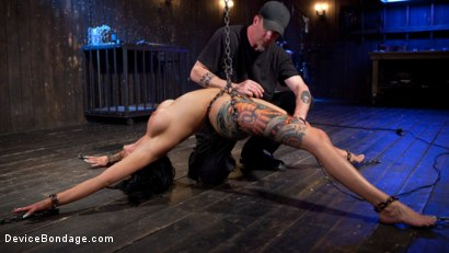 Photo number 1 from Tattooed Masochist In Grueling Bondage, Tormented and Orgasm Overload!! shot for Device Bondage on Kink.com. Featuring Lola Luscious and The Pope in hardcore BDSM & Fetish porn.