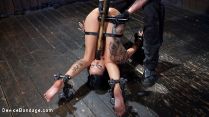 Photo number 5 from Tattooed Masochist In Grueling Bondage, Tormented and Orgasm Overload!! shot for Device Bondage on Kink.com. Featuring Lola Luscious and The Pope in hardcore BDSM & Fetish porn.