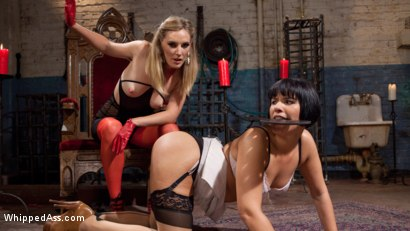 Photo number 12 from Curious Horny Slut Used Hard by Mona Wales! shot for Whipped Ass on Kink.com. Featuring Mona Wales and Rose Rhapsody in hardcore BDSM & Fetish porn.