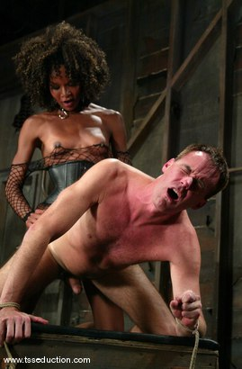 Photo number 11 from Wild Bill and Mistress Soleli shot for TS Seduction on Kink.com. Featuring Wild Bill and Mistress Soleli in hardcore BDSM & Fetish porn.