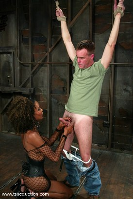 Photo number 2 from Wild Bill and Mistress Soleli shot for TS Seduction on Kink.com. Featuring Wild Bill and Mistress Soleli in hardcore BDSM & Fetish porn.