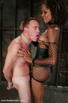 Photo number 5 from Wild Bill and Mistress Soleli shot for TS Seduction on Kink.com. Featuring Wild Bill and Mistress Soleli in hardcore BDSM & Fetish porn.