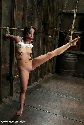Photo number 3 from Alexa Von Tess shot for Hogtied on Kink.com. Featuring Alexa Von Tess in hardcore BDSM & Fetish porn.