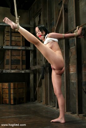 Photo number 2 from Alexa Von Tess shot for Hogtied on Kink.com. Featuring Alexa Von Tess in hardcore BDSM & Fetish porn.