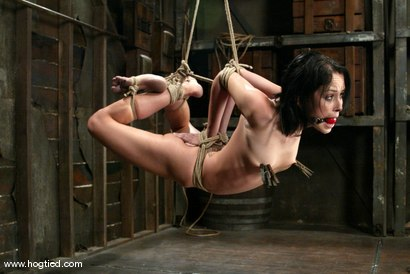 Photo number 9 from Alexa Von Tess shot for Hogtied on Kink.com. Featuring Alexa Von Tess in hardcore BDSM & Fetish porn.