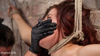 Photo number 5 from Sexy Pain Slut in Extreme Bondage, Tormented, Punished, and Made to Cum Against Her Will shot for Hogtied on Kink.com. Featuring Ingrid Mouth and The Pope in hardcore BDSM & Fetish porn.