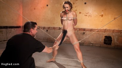 Photo number 7 from Rope Slut Begs to Suffer in Extreme Bondage shot for Hogtied on Kink.com. Featuring Dylan Ryan and The Pope in hardcore BDSM & Fetish porn.
