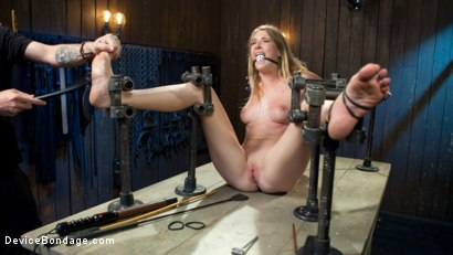 Photo number 14 from The Destruction of Ashley Lane shot for Device Bondage on Kink.com. Featuring Ashley Lane and The Pope in hardcore BDSM & Fetish porn.