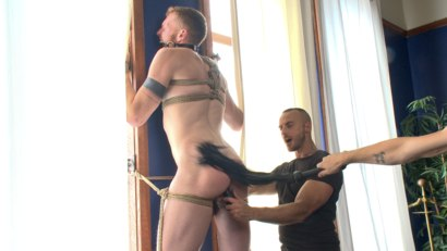 Photo number 5 from Cass Bolton - Muscled stud with huge balls gets the edging of his life shot for Men On Edge on Kink.com. Featuring Cass Bolton in hardcore BDSM & Fetish porn.