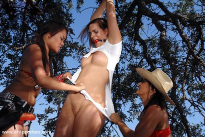 Photo number 3 from Sandra Romain, Crissy Cums and Annie Cruz shot for Whipped Ass on Kink.com. Featuring Sandra Romain, Annie Cruz and Crissy Cums in hardcore BDSM & Fetish porn.