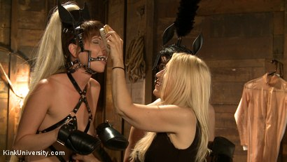 Photo number 13 from Pony Play for the New Pony or New Trainer	 shot for Kink University on Kink.com. Featuring Kay Kardia, SubMiss Ann, Olivia Fawn and Speckles in hardcore BDSM & Fetish porn.
