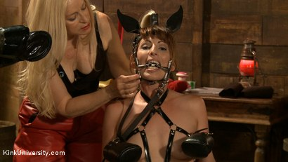 Photo number 10 from Pony Play for the New Pony or New Trainer	 shot for Kink University on Kink.com. Featuring Kay Kardia, SubMiss Ann, Olivia Fawn and Speckles in hardcore BDSM & Fetish porn.