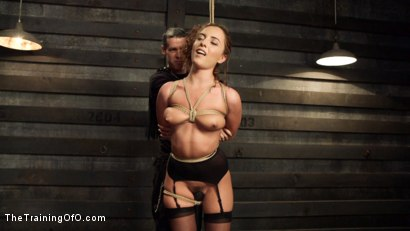 Photo number 5 from Anal Slut Trained to Obey shot for The Training Of O on Kink.com. Featuring Roxanne Rae and Mr. Pete in hardcore BDSM & Fetish porn.