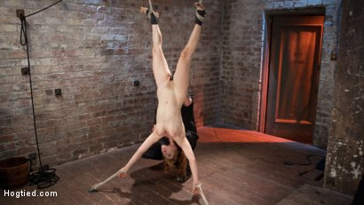 Photo number 12 from Red Headed Anal Queen is Helpless in Grueling Bondage shot for Hogtied on Kink.com. Featuring Penny Pax and The Pope in hardcore BDSM & Fetish porn.