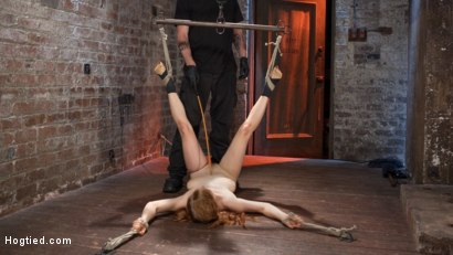 Photo number 13 from Red Headed Anal Queen is Helpless in Grueling Bondage shot for Hogtied on Kink.com. Featuring Penny Pax and The Pope in hardcore BDSM & Fetish porn.