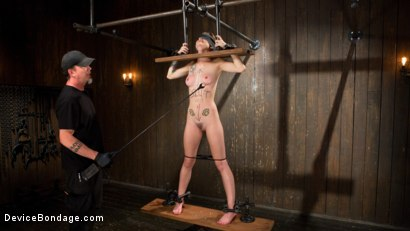 Photo number 14 from Slut Hole shot for Device Bondage on Kink.com. Featuring Jeze Belle in hardcore BDSM & Fetish porn.