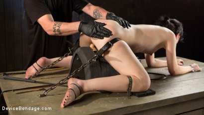Photo number 13 from Fresh Meat - Charlotte Sartre Suffers and Orgasms in Bondage shot for Device Bondage on Kink.com. Featuring Charlotte Sartre and The Pope in hardcore BDSM & Fetish porn.