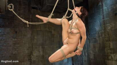 Photo number 9 from Newcomer is Man Handled, Bound in Brutal Bondage and Tormented shot for Hogtied on Kink.com. Featuring Nikki Knightly and The Pope in hardcore BDSM & Fetish porn.