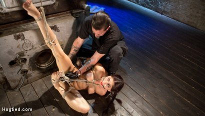 Photo number 2 from Newcomer is Man Handled, Bound in Brutal Bondage and Tormented shot for Hogtied on Kink.com. Featuring Nikki Knightly and The Pope in hardcore BDSM & Fetish porn.