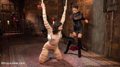 Photo number 2 from Felony Returns! shot for Whipped Ass on Kink.com. Featuring Pink and Felony in hardcore BDSM & Fetish porn.