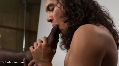 Photo number 23 from Venus Lux Breaks In The Newbie On Her Solid Cock shot for TS Seduction on Kink.com. Featuring Venus Lux and Javier LoveTongue in hardcore BDSM & Fetish porn.