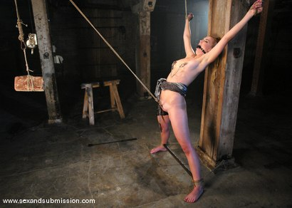 Photo number 4 from Annette Schwarz and Chris Charming shot for Sex And Submission on Kink.com. Featuring Annette Schwarz and Chris Charming in hardcore BDSM & Fetish porn.