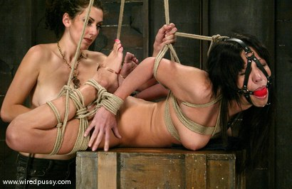 Photo number 14 from Princess Donna Dolore and Roxy DeVille shot for Wired Pussy on Kink.com. Featuring Roxy DeVille and Princess Donna Dolore in hardcore BDSM & Fetish porn.