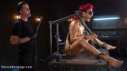 Photo number 9 from Helpless Slut Tormented and Massive Squirting Orgasms!! shot for Device Bondage on Kink.com. Featuring Daisy Ducati and The Pope in hardcore BDSM & Fetish porn.