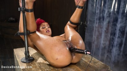 Photo number 15 from Helpless Slut Tormented and Massive Squirting Orgasms!! shot for Device Bondage on Kink.com. Featuring Daisy Ducati and The Pope in hardcore BDSM & Fetish porn.