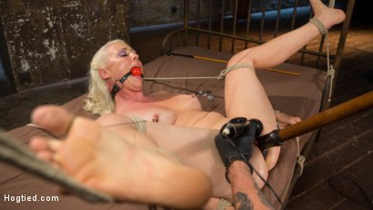 Photo number 14 from Lorelei Lee Submits in Brutal Bondage with Grueling Torment!!! shot for Hogtied on Kink.com. Featuring Lorelei Lee and The Pope in hardcore BDSM & Fetish porn.