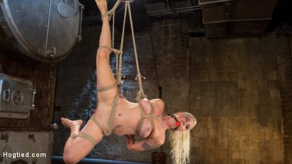 Photo number 8 from Lorelei Lee Submits in Brutal Bondage with Grueling Torment!!! shot for Hogtied on Kink.com. Featuring Lorelei Lee and The Pope in hardcore BDSM & Fetish porn.