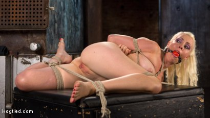 Photo number 6 from Lorelei Lee Submits in Brutal Bondage with Grueling Torment!!! shot for Hogtied on Kink.com. Featuring Lorelei Lee and The Pope in hardcore BDSM & Fetish porn.
