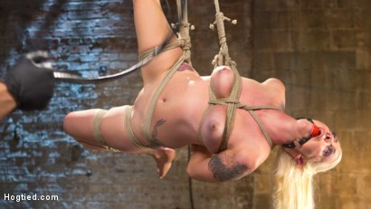 Photo number 9 from Lorelei Lee Submits in Brutal Bondage with Grueling Torment!!! shot for Hogtied on Kink.com. Featuring Lorelei Lee and The Pope in hardcore BDSM & Fetish porn.