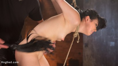 Photo number 11 from Petite Brunette is Captured in Bondage, Tormented, and Made to Cum shot for Hogtied on Kink.com. Featuring Aria Alexander and The Pope in hardcore BDSM & Fetish porn.