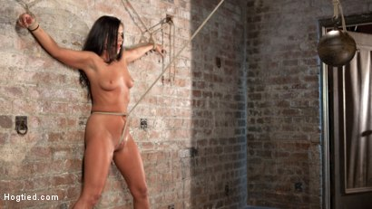 Photo number 13 from Devastating Anal Fisting in Brutal Bondage shot for Hogtied on Kink.com. Featuring Roxy Raye and The Pope in hardcore BDSM & Fetish porn.