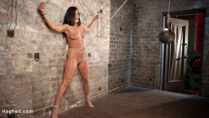 Photo number 14 from Devastating Anal Fisting in Brutal Bondage shot for Hogtied on Kink.com. Featuring Roxy Raye and The Pope in hardcore BDSM & Fetish porn.