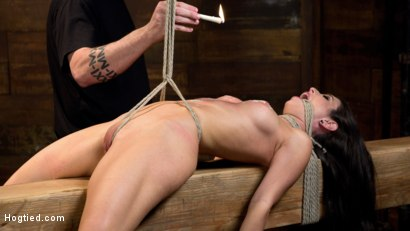 Photo number 12 from Serena Blair is Back in Extreme Bondage and Cumming Like a Whore shot for Hogtied on Kink.com. Featuring Serena Blair and The Pope in hardcore BDSM & Fetish porn.