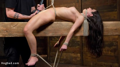 Photo number 14 from Serena Blair is Back in Extreme Bondage and Cumming Like a Whore shot for Hogtied on Kink.com. Featuring Serena Blair and The Pope in hardcore BDSM & Fetish porn.