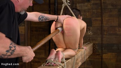 Photo number 16 from Serena Blair is Back in Extreme Bondage and Cumming Like a Whore shot for Hogtied on Kink.com. Featuring Serena Blair and The Pope in hardcore BDSM & Fetish porn.