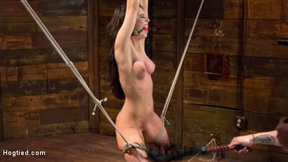 Photo number 3 from Serena Blair is Back in Extreme Bondage and Cumming Like a Whore shot for Hogtied on Kink.com. Featuring Serena Blair and The Pope in hardcore BDSM & Fetish porn.