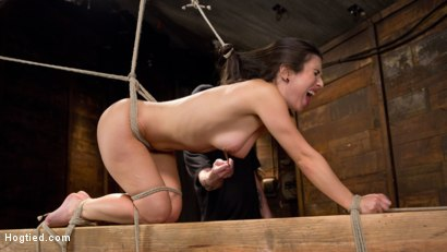 Photo number 15 from Serena Blair is Back in Extreme Bondage and Cumming Like a Whore shot for Hogtied on Kink.com. Featuring Serena Blair and The Pope in hardcore BDSM & Fetish porn.