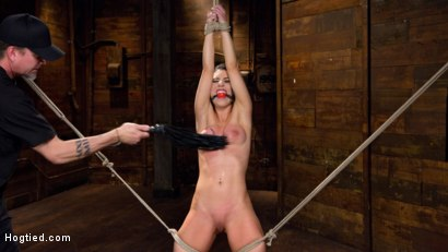 Photo number 5 from Serena Blair is Back in Extreme Bondage and Cumming Like a Whore shot for Hogtied on Kink.com. Featuring Serena Blair and The Pope in hardcore BDSM & Fetish porn.