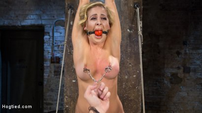 Photo number 4 from Hot Blonde MILF Suffers Through Grueling Bondage shot for Hogtied on Kink.com. Featuring Cherie Deville in hardcore BDSM & Fetish porn.