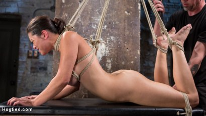Photo number 4 from Pretty Loves Pain shot for Hogtied on Kink.com. Featuring Raven Rocket and The Pope in hardcore BDSM & Fetish porn.