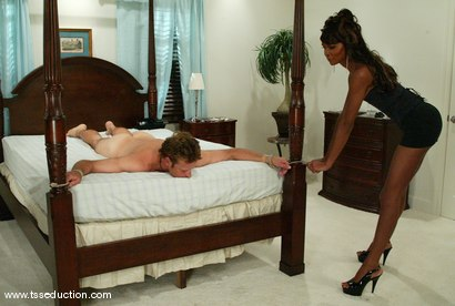 Photo number 7 from Stefano and Mistress Soleli shot for TS Seduction on Kink.com. Featuring Mistress Soleli and Stefano in hardcore BDSM & Fetish porn.