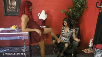 Photo number 1 from Diva, Daisy Ducati  will fuck her way onto the red carpet shot for TS Pussy Hunters on Kink.com. Featuring Daisy Ducati and Salina Samone in hardcore BDSM & Fetish porn.