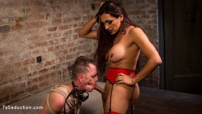 Photo number 7 from TS Cream Pie For Good Sluts shot for TS Seduction on Kink.com. Featuring Chad Diamond and Jessy Dubai in hardcore BDSM & Fetish porn.