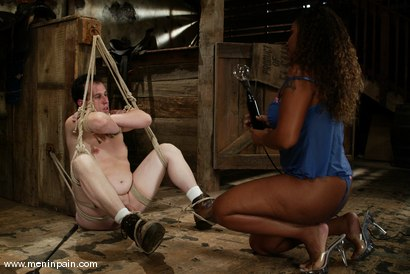 Photo number 2 from mini and Kitten shot for Men In Pain on Kink.com. Featuring Kitten and mini in hardcore BDSM & Fetish porn.